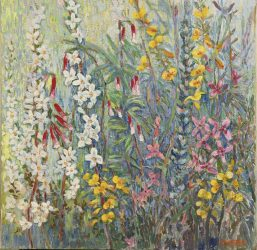 Waxflowers and wild heather