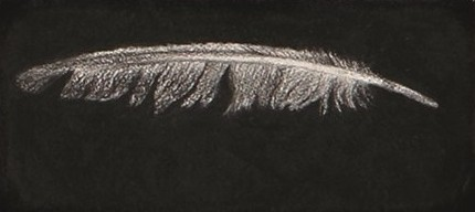 Feather #48