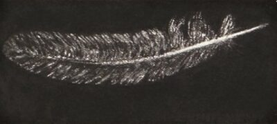 Feather #39