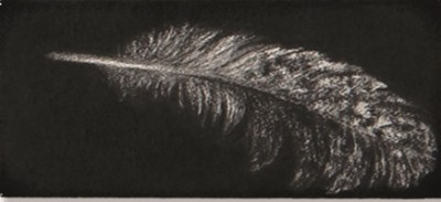 Feather #52