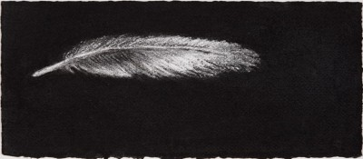 Feather #13