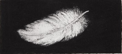 Feather #22