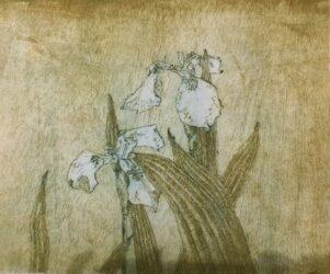 Diagonal Mar Iris series, Composition III