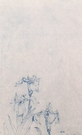 Diagonal Mar Iris series, Composition IV