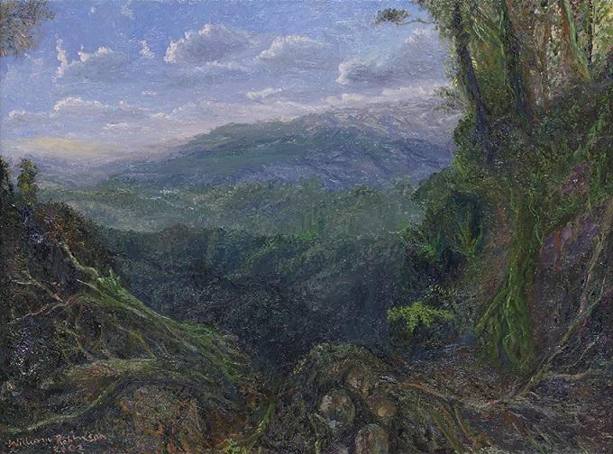 Tweed Valley & rainforest
