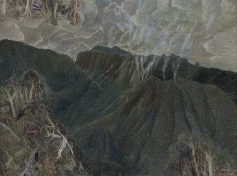 Bushfire above Guanaba