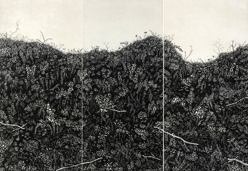 Lark rise hedgerow
