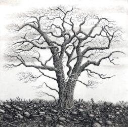 Tree series I
