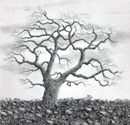 Tree series IV