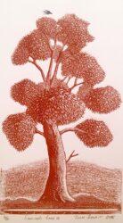 Samuel's tree II