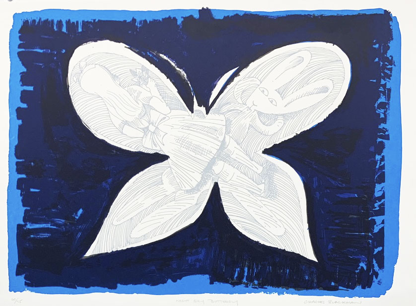 Night sky butterfly  c.