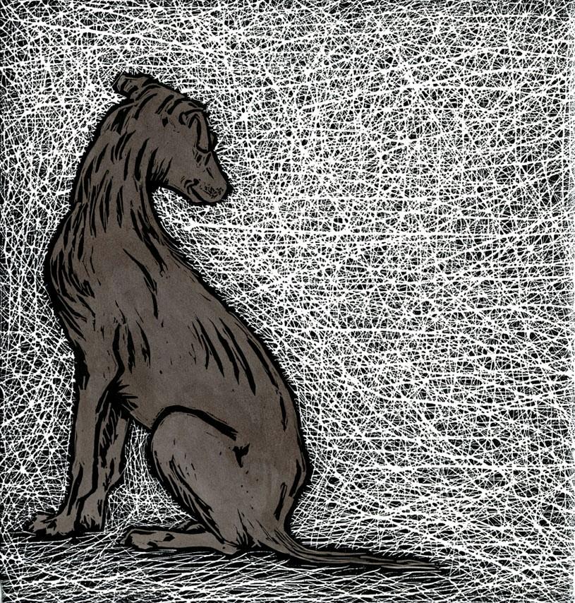 Russet hound