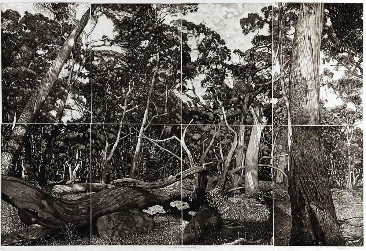 Burnie Print Prize – 2019 Finalists