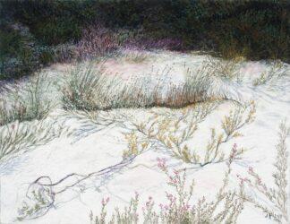 Straddie landscape no. 1