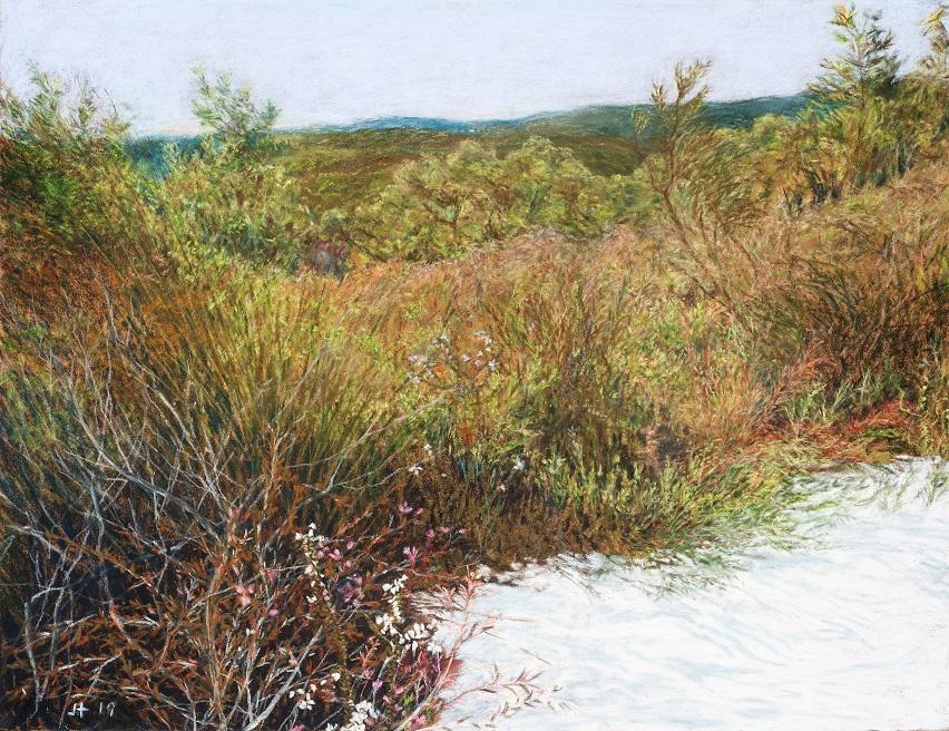 Straddie landscape no. 8