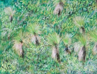 Straddie landscape no. 12