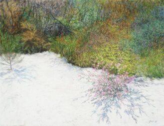 Straddie landscape no. 5