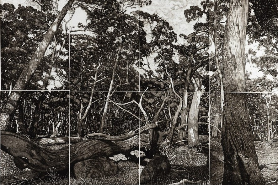 The Tangled Wood (composition I)