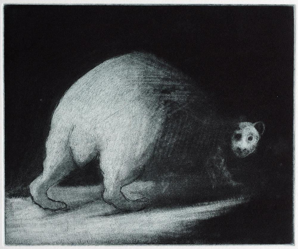Untitled (bear bum)