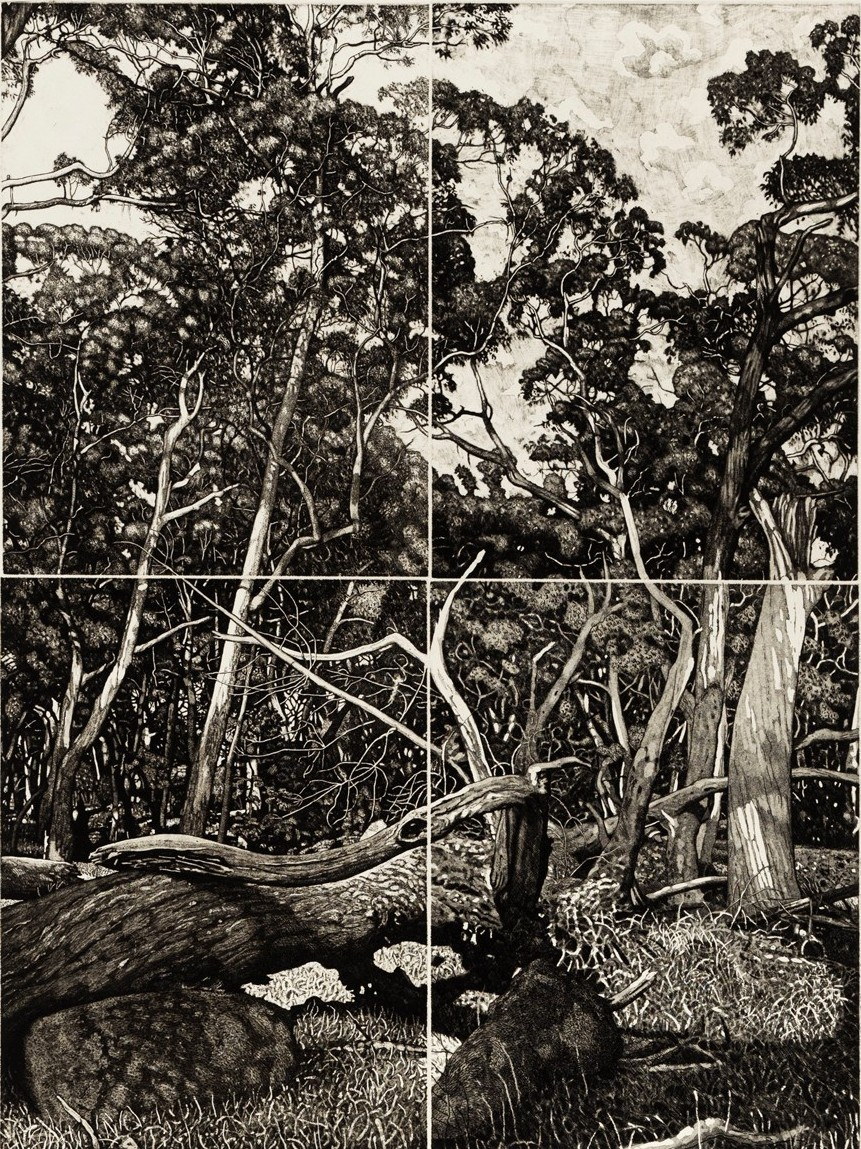 The Tangled Wood (composition V)