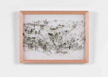 JOHN WOLSELEY – Beetle engraving I