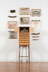 JOHN WOLSELEY – beetlearium