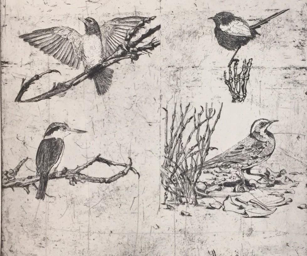 Study for false ornithology