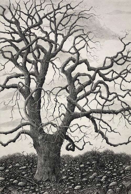 Tree of grace