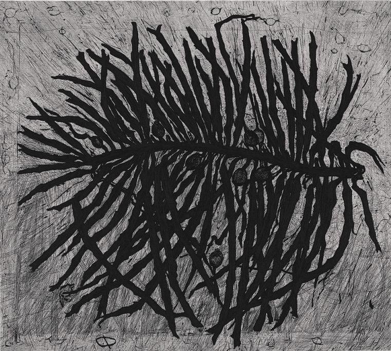 Wings of kelp – page 1
