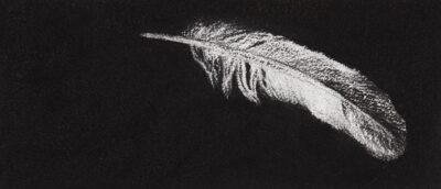 Feather #60A