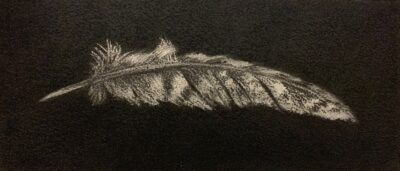 Feather #17A