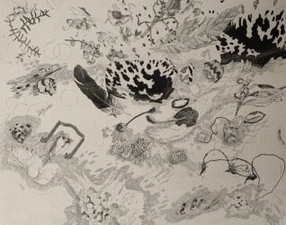 Sea wrack with turtle shell and dugong bone – Baniyala