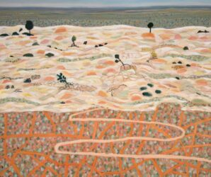 Mungo kangaroo tracks