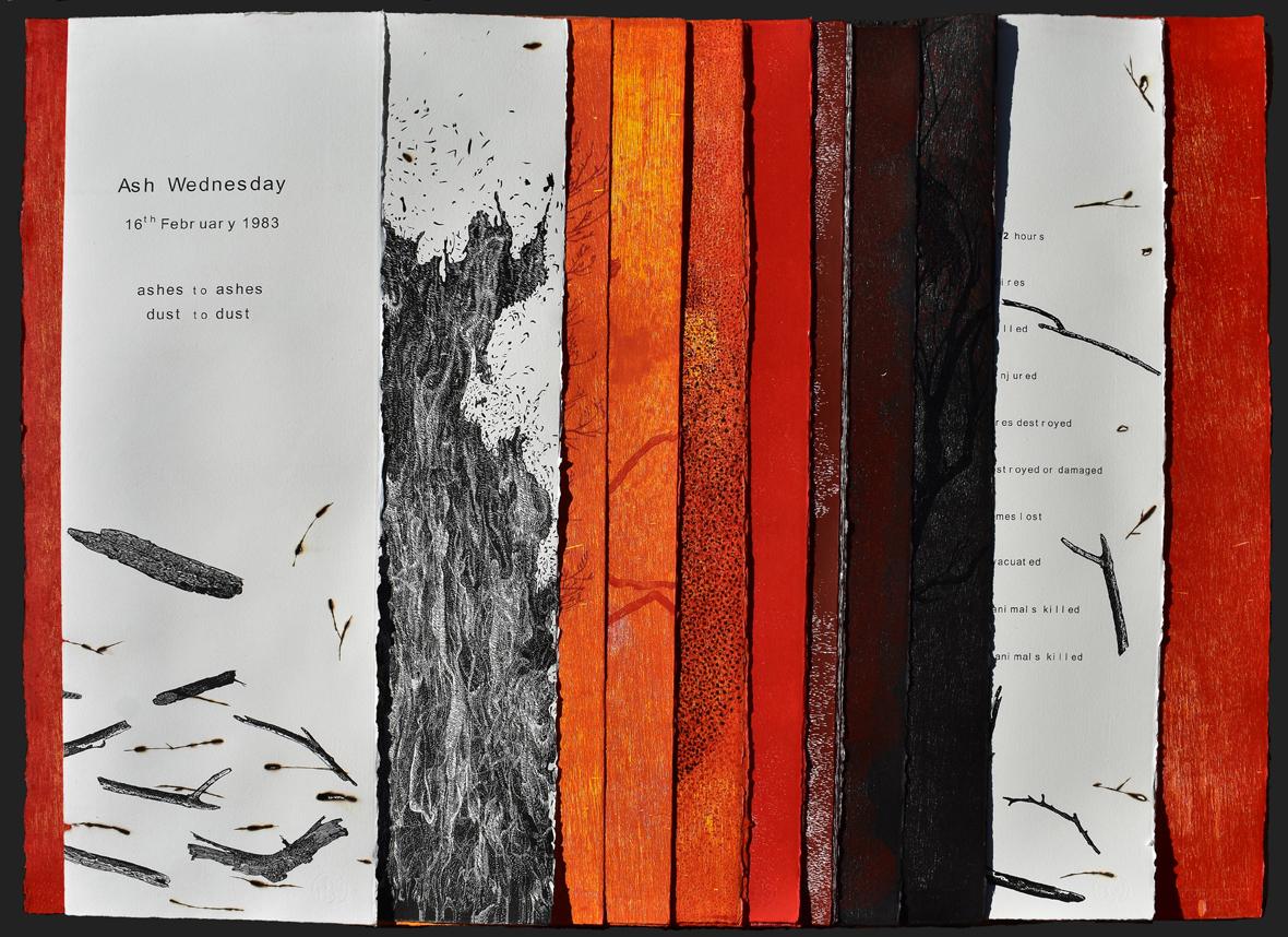 Dianne Fogwell: Canberra Critics' Award for Visual Arts