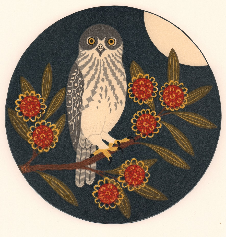 Barking owl & hakea