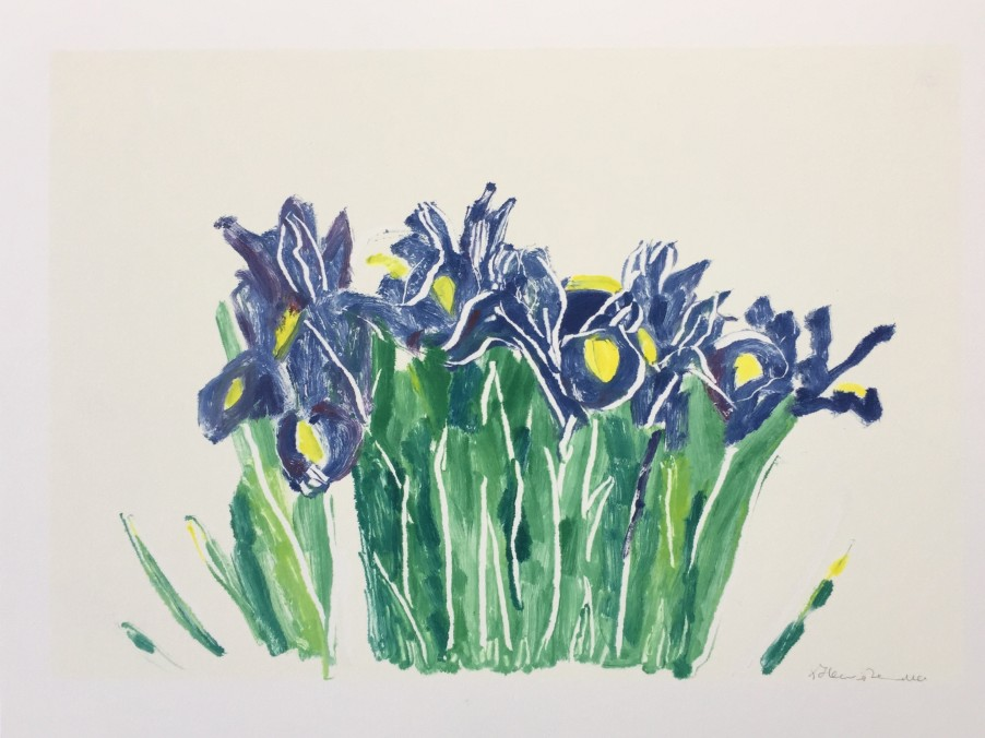 Irises #2