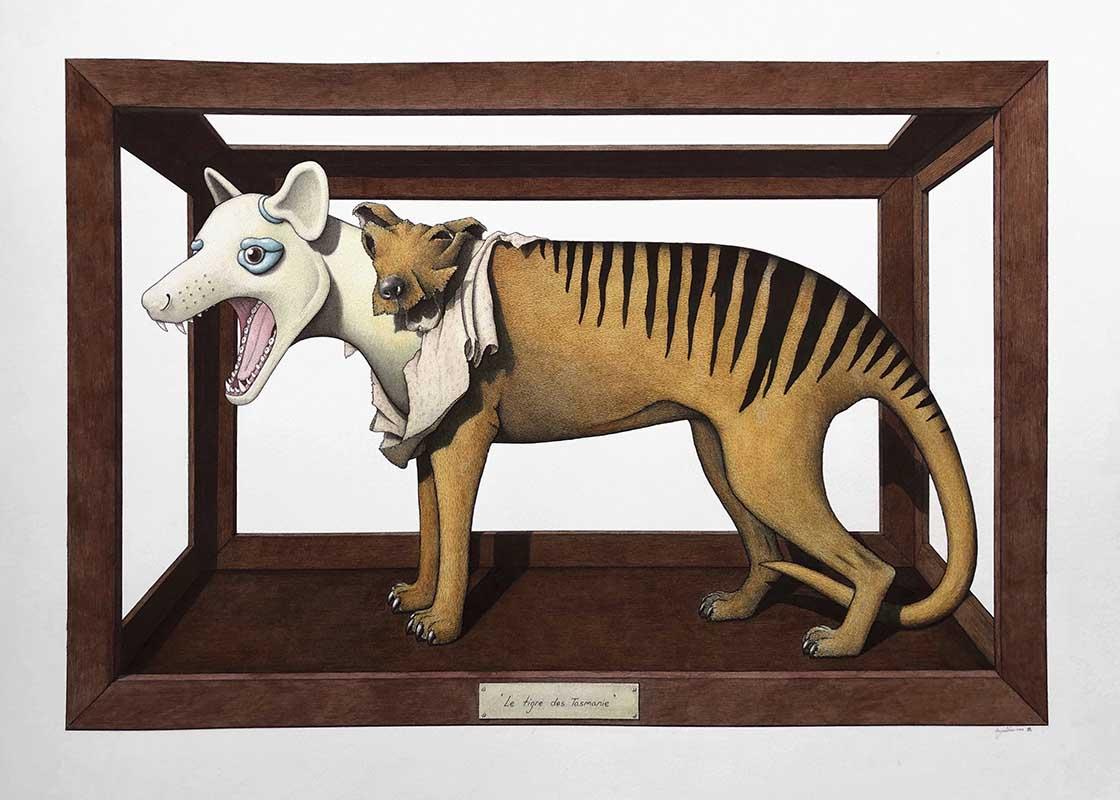 Le tigre des Tasmanie