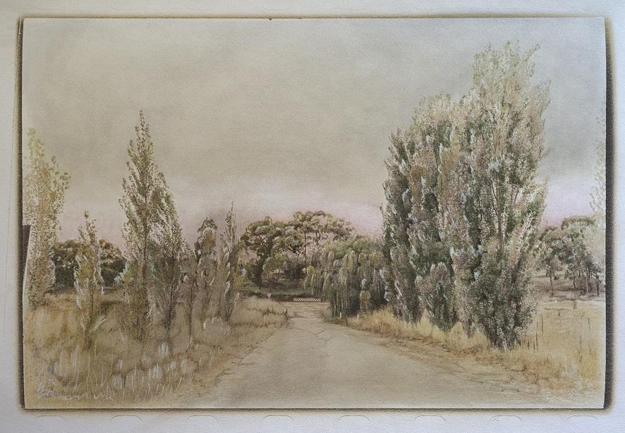 Hill End Poplars
