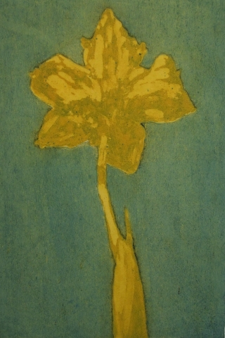 Daffodil study I (green/yellow)