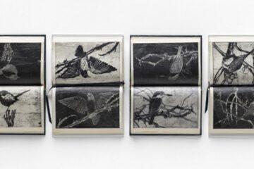 Martin King – Gosford Art Prize 2020