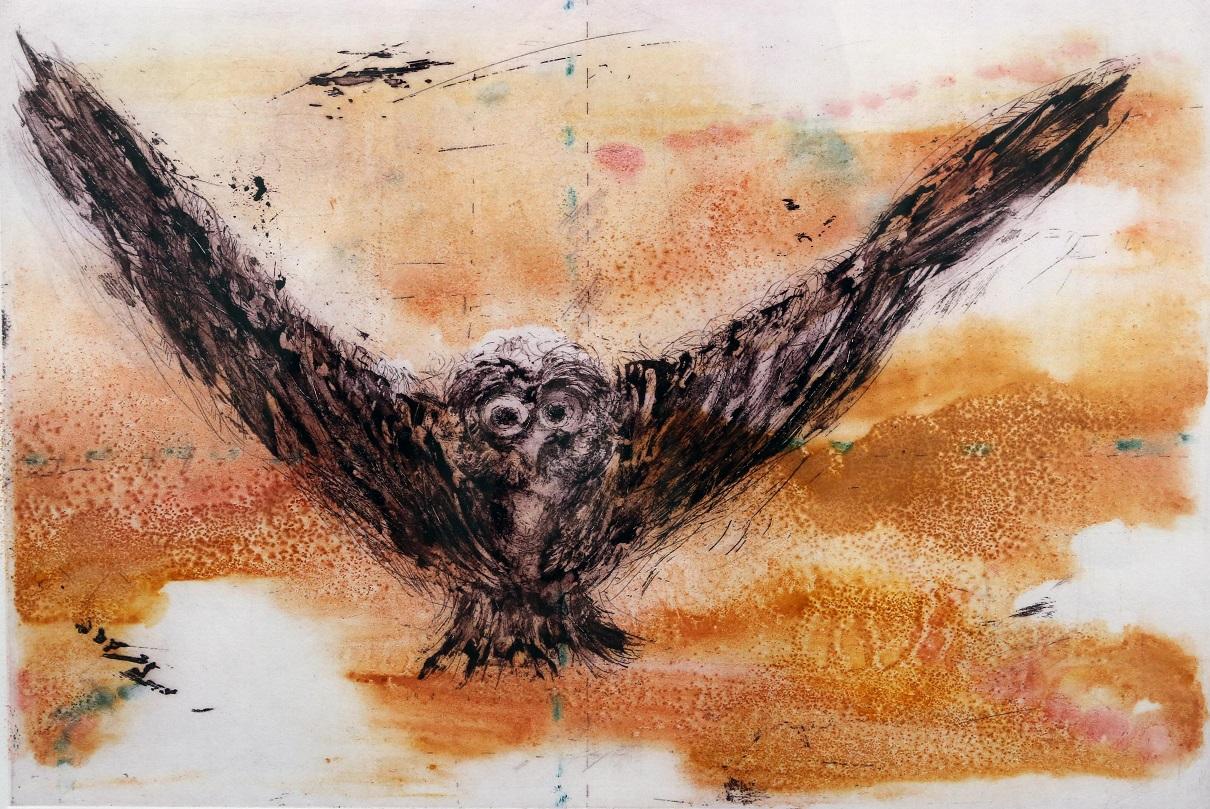Untitled (Owl VI)