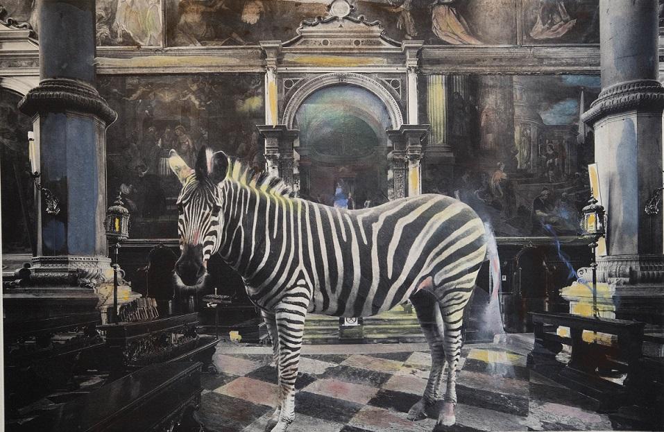 San Zaccaria with zebra