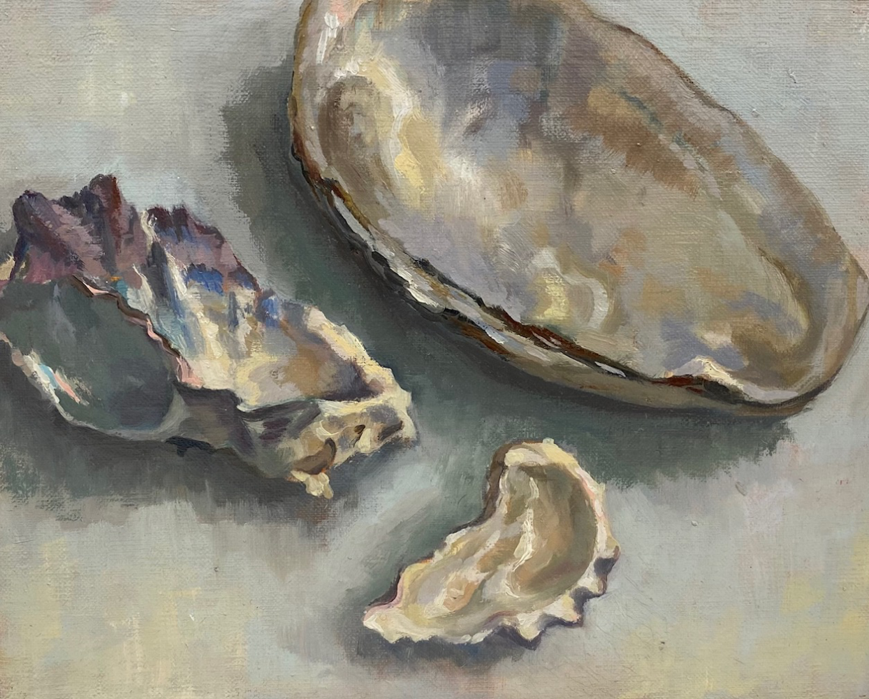 Fresh water mussels and oyster shells