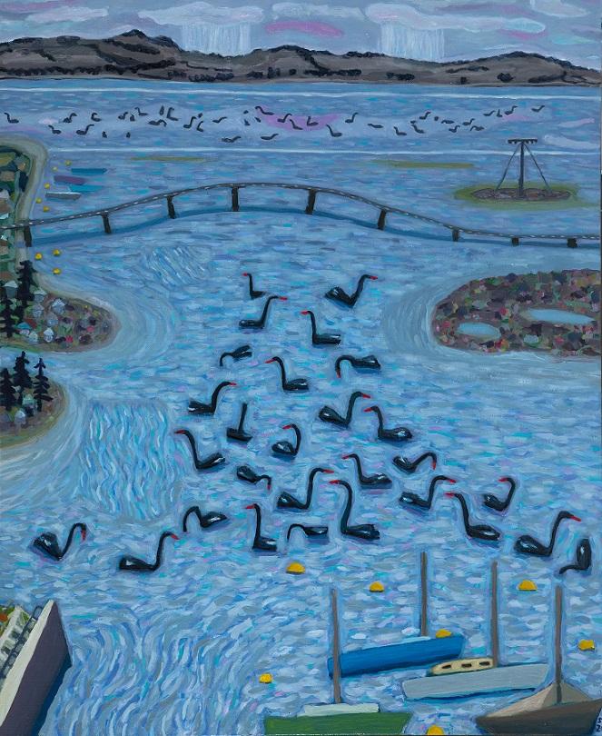 Kunuwarra, black swans of Queenscliff