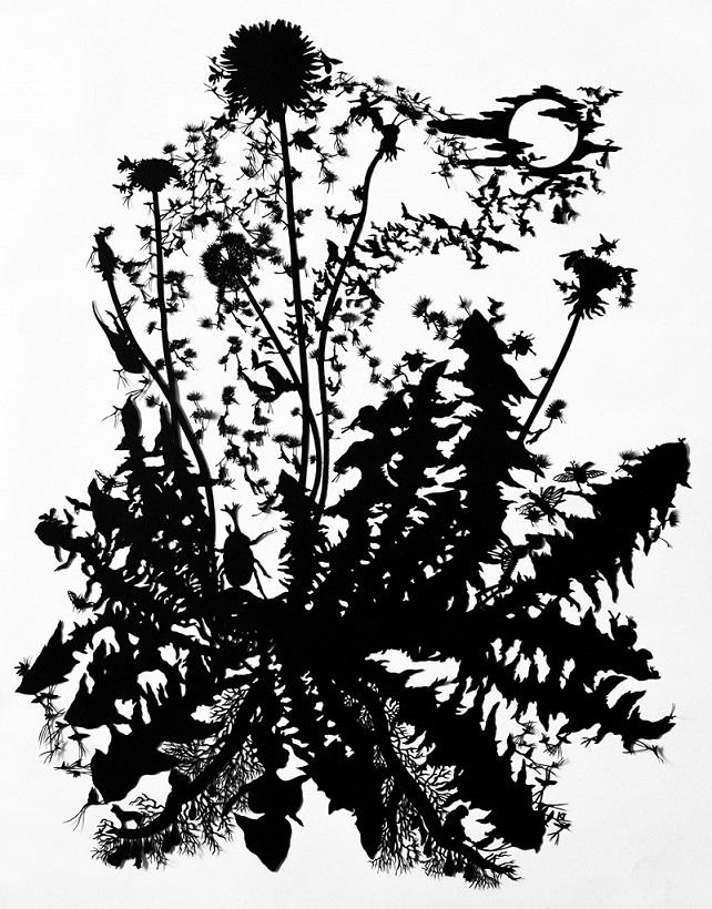 Dandelion and beetle
