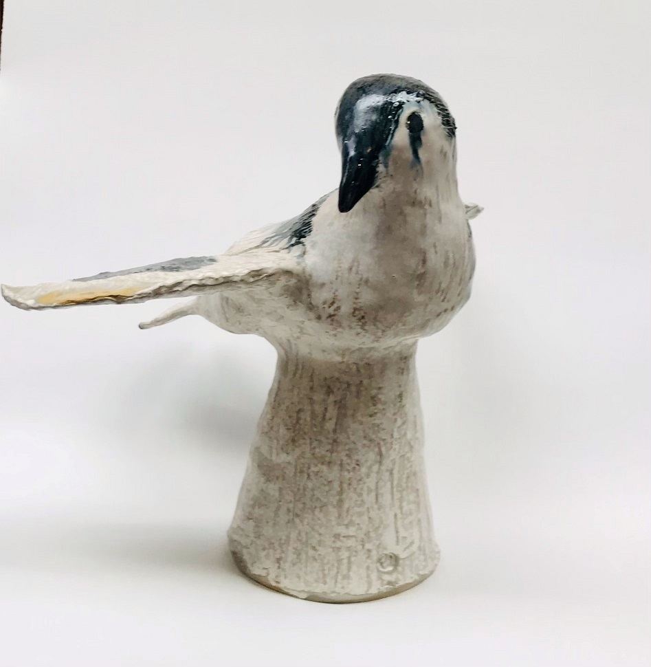 Bowerbird #2