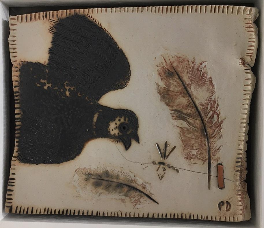 Nightjar and feathers