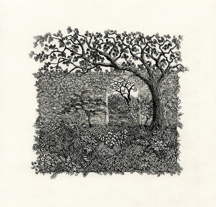 Beyond the walled garden