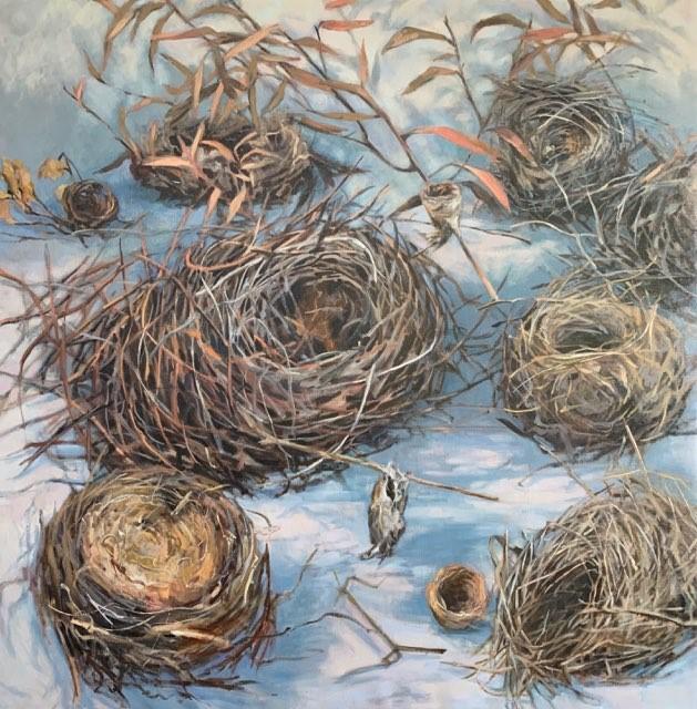 10 nests habitat 102