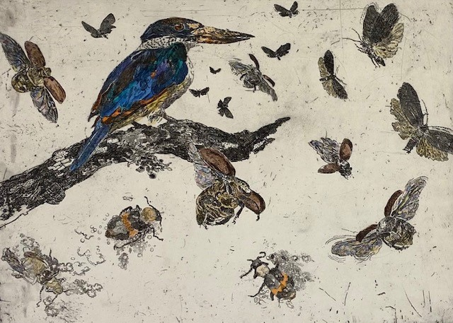Djirrididi – forest kingfisher with scavenger moths and bombardier beetles